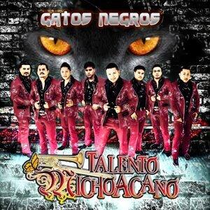 Talento Michoacano 歌手頭像