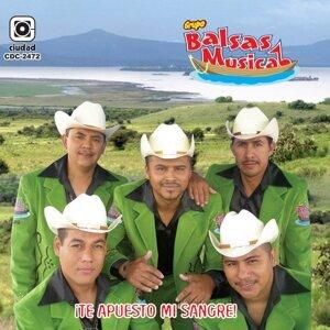 Grupo Balsas Musical 歌手頭像