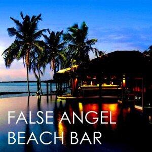 False Angel 歌手頭像