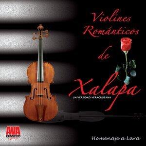 Violines Magicos De Xalapa 歌手頭像