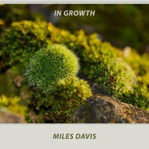 Miles Davis All-Stars, Miles Davis Quartet 歌手頭像