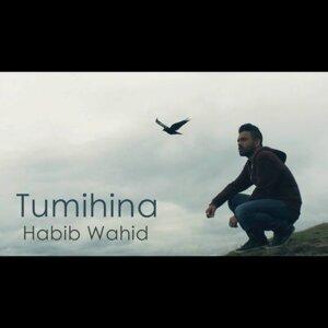 Habib Wahid 歌手頭像