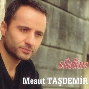 Mesut Taşdemir 歌手頭像