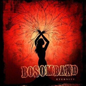 Bosom Band 歌手頭像
