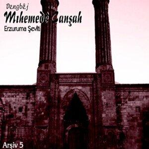 Dengbej Mıhemede Canşah 歌手頭像