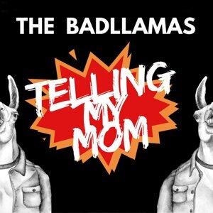 The Badllamas 歌手頭像