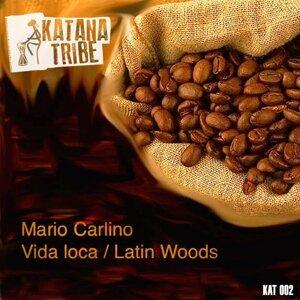 Mario Carlino 歌手頭像