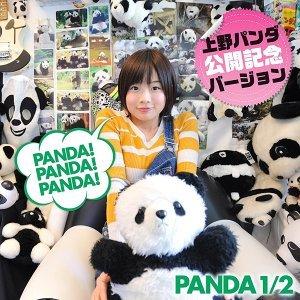 PANDA 1/2 歌手頭像