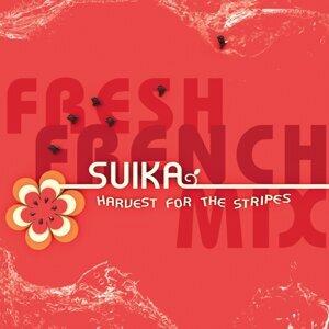 Suika 歌手頭像
