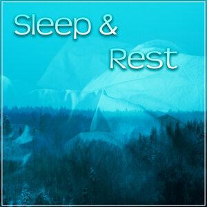 Better Sleep Oasis 歌手頭像