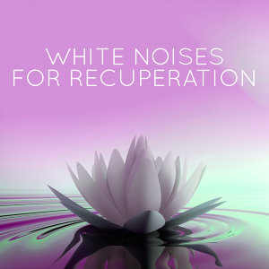 Nature White Noise for Relaxation and Meditation 歌手頭像