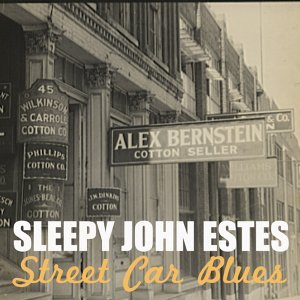Sleepy John Estes 歌手頭像