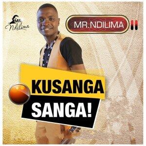 Mr. Ndilima 歌手頭像