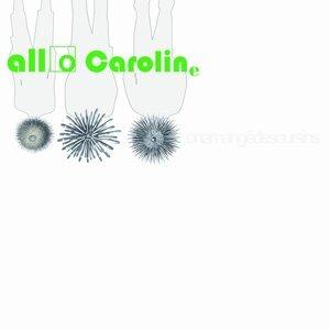 Allocaroline