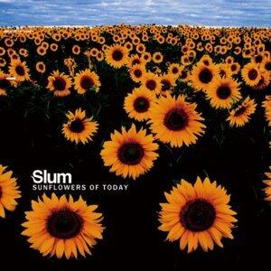 Slum 歌手頭像