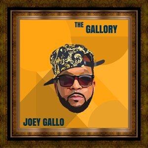 Joey Gallo 歌手頭像