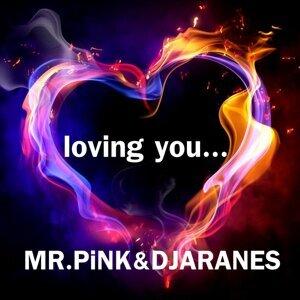 Mr Pink , DJ Aranes 歌手頭像