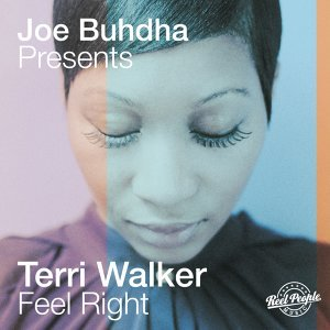 Joe Buhdha, Terri Walker 歌手頭像