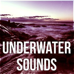 Water Sounds Music Zone