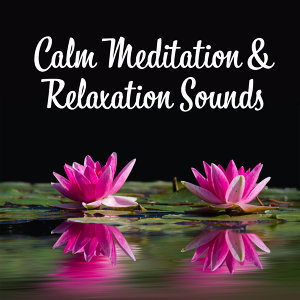 Guided Meditation Music Zone 歌手頭像