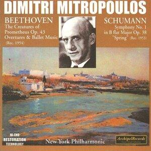 Dimitri Mitropoulos, New York Philharmonic Orchestra 歌手頭像