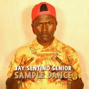 Jay Sentino Senior 歌手頭像