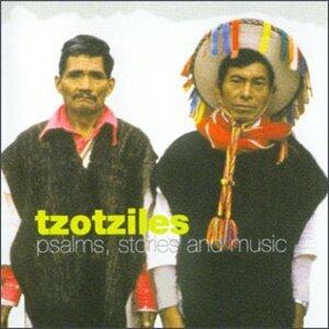 Tzotziles 歌手頭像