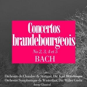 Orchestre Symphonique de Winterthur, Walter Goehr, Orchestre de Chambre de Stuttgart, Karl Munchinger 歌手頭像
