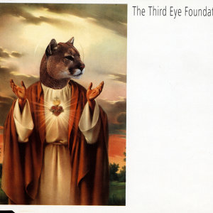 The Third Eye Foundation 歌手頭像