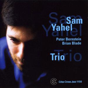 Sam Yahel Trio