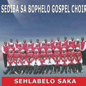 Sediba Sa Bophelo Gospel choir 歌手頭像