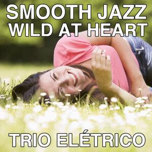 Trio Eletrico 歌手頭像