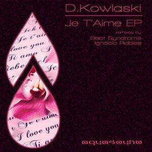 D.kowalski 歌手頭像