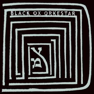 Black Ox Orkestar 歌手頭像