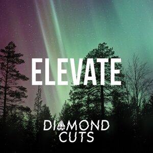 Diamond Cuts 歌手頭像