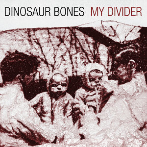 Dinosaur Bones 歌手頭像