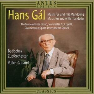 Badisches Zupforchester/Volker Gerland 歌手頭像