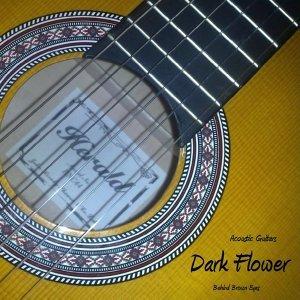 Dark Flower 歌手頭像