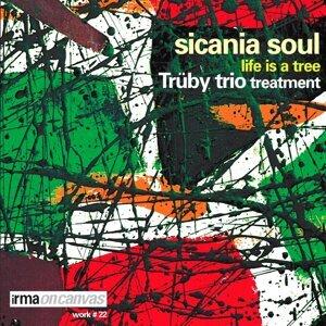 Sicania Soul 歌手頭像