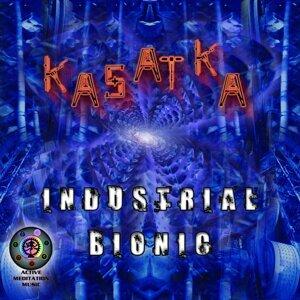 Kasatka 歌手頭像