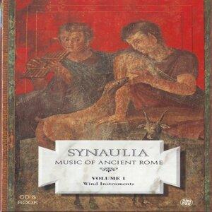 Synaulia 歌手頭像