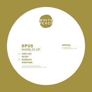 Opus 歌手頭像