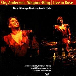 Stig Fogh Andersen 歌手頭像