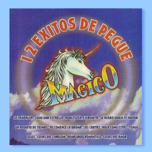 Grupo Magico 歌手頭像