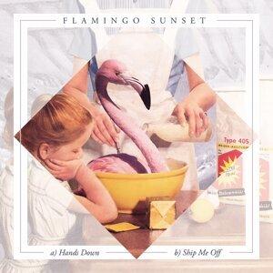 Flamingo Sunset 歌手頭像