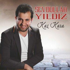 Sevdullah Yıldız 歌手頭像
