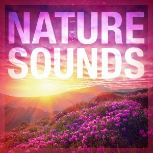 Sounds of Nature White Noise for Mindfulness 歌手頭像