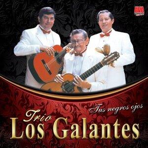 Trio Los Galantes 歌手頭像