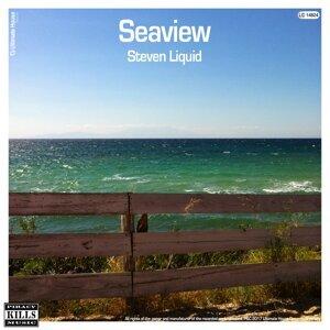 Steven Liquid 歌手頭像