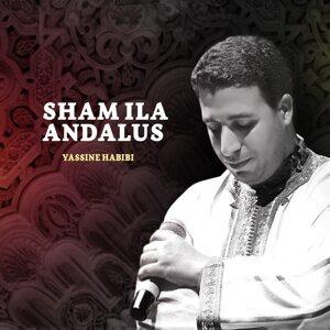 Yassine Habibi 歌手頭像